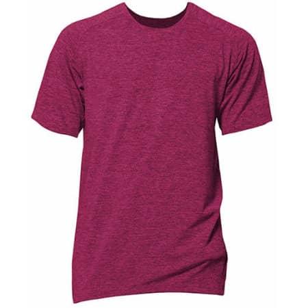 Rex - Short Sleeve Sport T-Shirt von Nath (Artnum: NH180