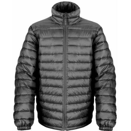 Men`s Ice Bird Padded Jacket von Result (Artnum: RT192