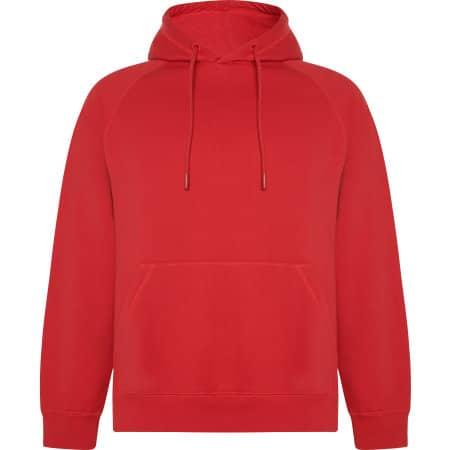 Vinson Organic Hooded Sweatshirt von Roly Eco (Artnum: RY1074
