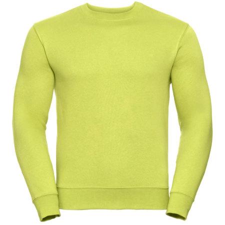 Authentic Sweatshirt in Lime von Russell (Artnum: Z262N