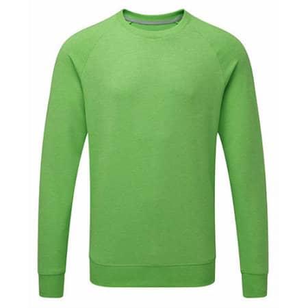 Men`s HD Raglan Sweat in Green Marl von Russell (Artnum: Z280M